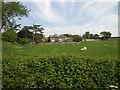 TF8830 : Farmhouse, Dunton Farm by Nigel Jones