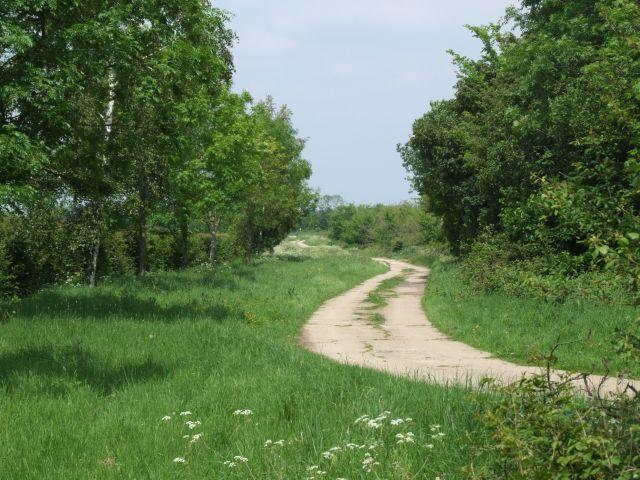 Lang Gate Way
