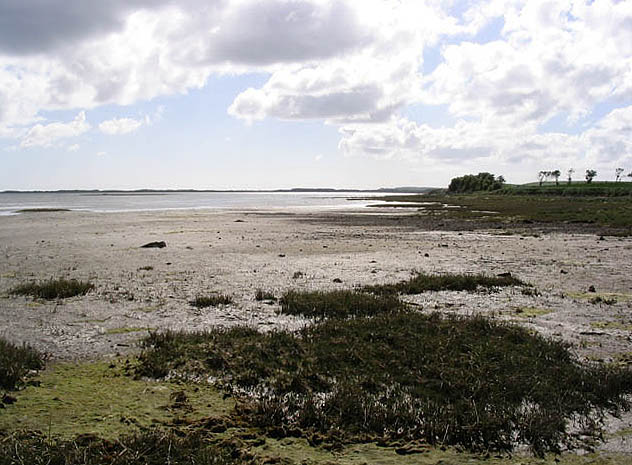 Lindisfarne National Nature Reserve:: OS grid NU1038 :: Geograph ...