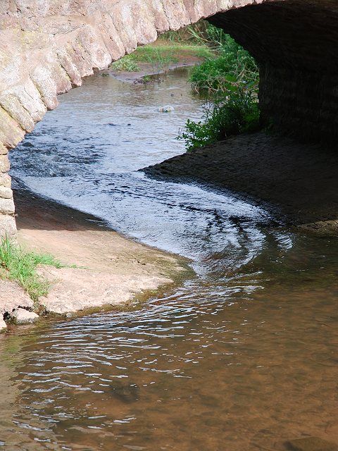 Cannington Brook