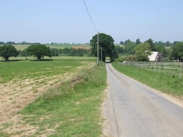 Looking Down Buck's Hill to Mundham Road