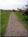 NO8199 : Deeside way by Russell Lett
