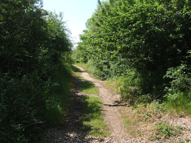 Marriott's Way, National Trail, near Themelthorpe