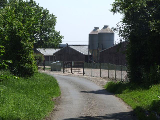 Chicken Sheds, Fir Lane