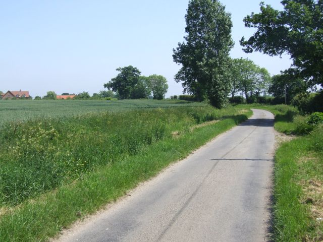 Looking Along Jordan Lane