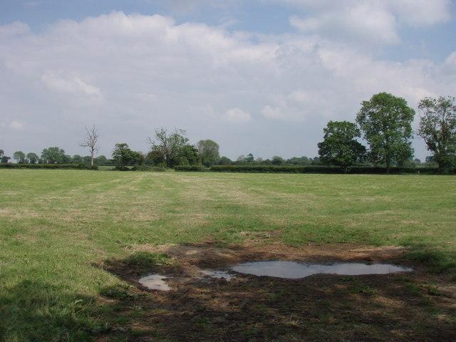 Pennard Hill