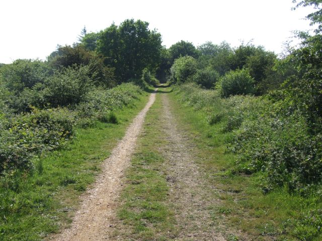 Along Marriott's Way towards Reepham