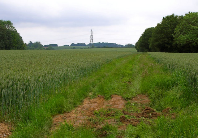 Track Leading to Lilley Hoo