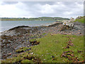 NM7716 : Foreshore on Ardmaddy Peninsula by Colin Chambers