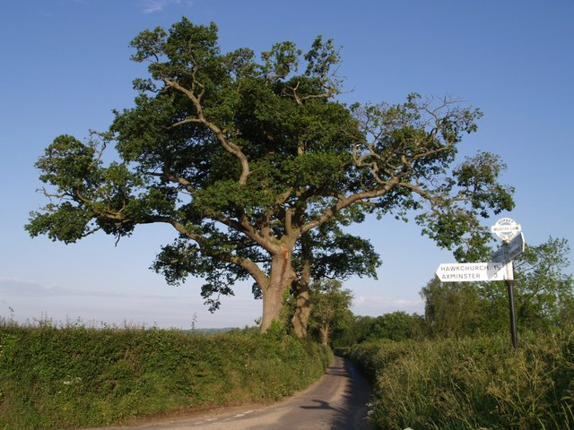 Junction on Holditch Lane