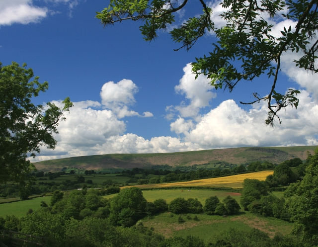 The Black Mountains from Fair Oak (Farm)