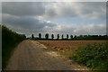 TL9284 : Track to High Brettenham by Bob Jones