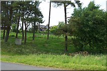 NS5309 : Nith Lodge, New Cumnock by Robert Guthrie