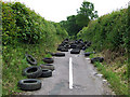 SJ9403 : Something Nasty in the Lane, near Westcroft, Staffordshire by Roger  Kidd