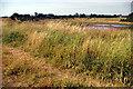 SJ7879 : Nature Reserve 3 - Town Lane by Roger Gittins