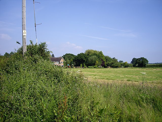 Field from First Dig Lane
