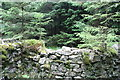 NY6475 : Sheepfold at Spur Sike by Peter McDermott