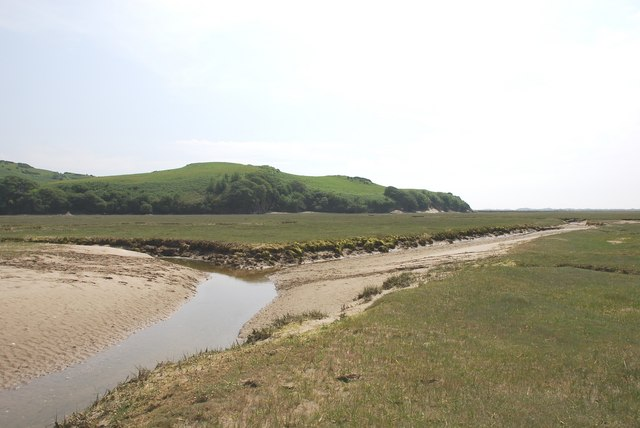 Saltings on south of Traeth Bach