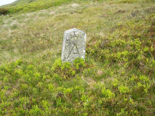 Boundary Stone??