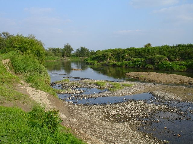 The Severn at Royal Hill