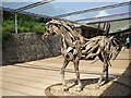 SX0554 : Wooden horse, Eden Project by Kenneth  Allen