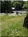 SX3480 : Churchyard at Little Comfort by Derek Harper