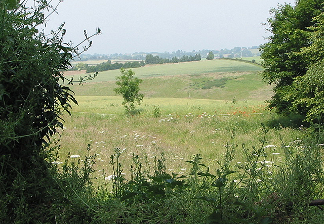 View across rolling landscape, Kingstone