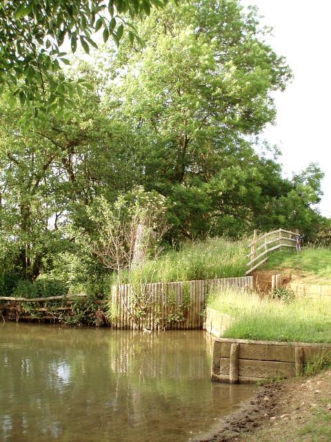 Pond near Dropshort Farm