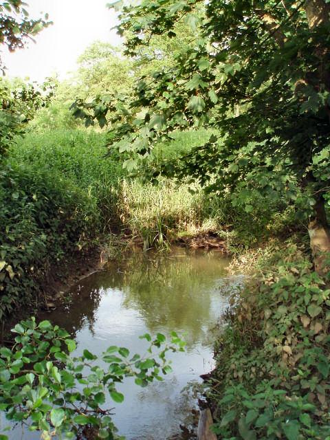 Stream near Biddlesden Park
