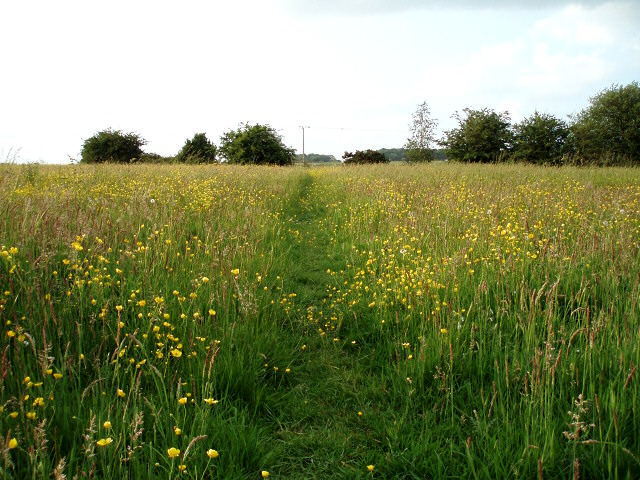 Footpath towards Turweston Airfield
