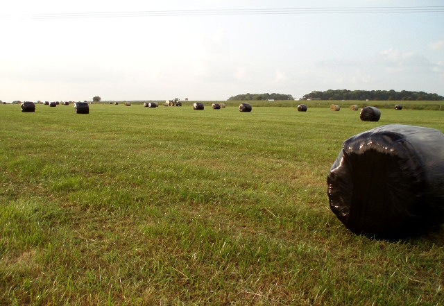 Silage baling on Turweston Airfield