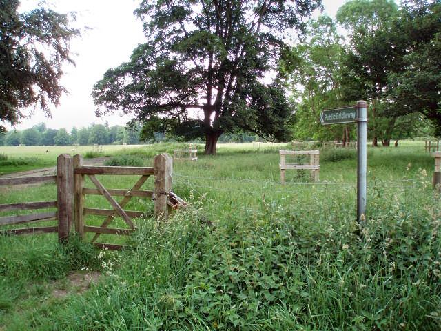 Bridleway near Dropshort Farm