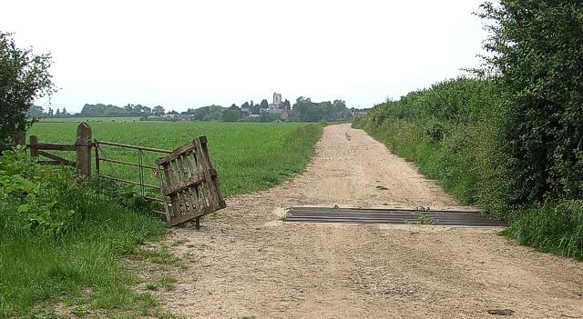 Cattle-grid east of Hardwick