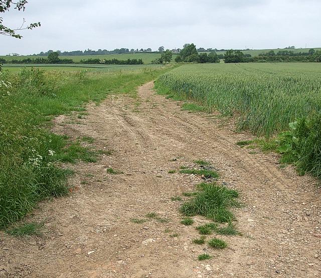 Fields between Hardwick & Whitchurch