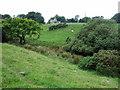 SM9631 : Across the fields to church by ceridwen