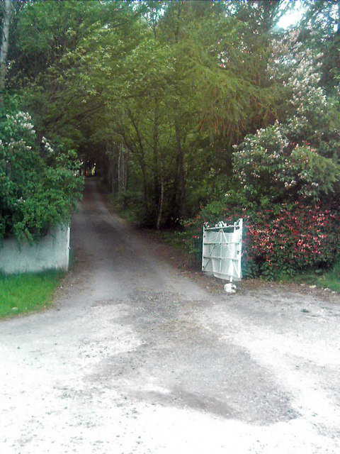 Driveway to Balranaich