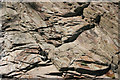 SX4362 : Detail of rock formation on Tamar River tidal shoreline by Kate Jewell