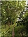 TA1934 : Footpath near Sproatley by Andy Beecroft