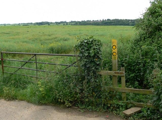 Public footpaths off Covert Lane, Scraptoft