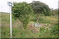 TL0975 : Path to Leighton Bromswold by Shaun Ferguson