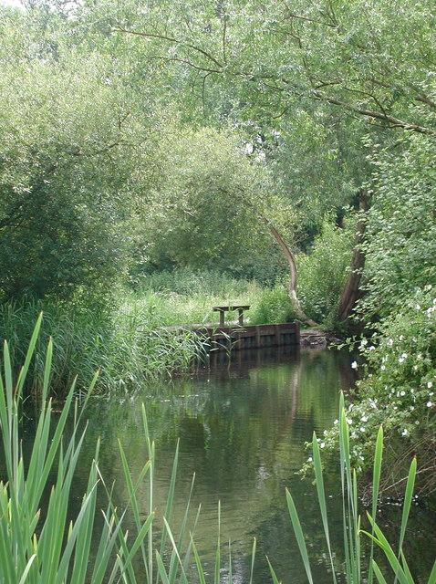 Howden Marsh
