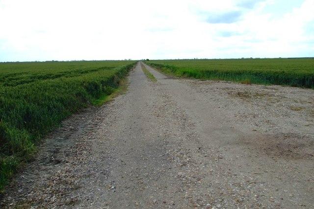 Track 'tween wheatfields