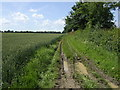 TM2790 : Muddy bridleway by Sycamore Farm by Jonathan Billinger