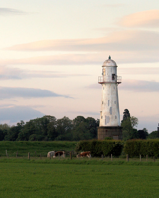 Whitgift lighthouse with cows in field