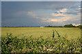 TF1803 : Farmland off Gunthorpe Road by Kate Jewell