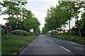 TF1604 : Goodwin Walk, near Werrington by Kate Jewell