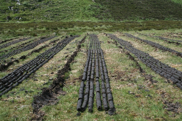 Peat Drying.