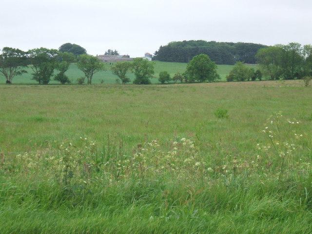 View towards Mains of Pitfour