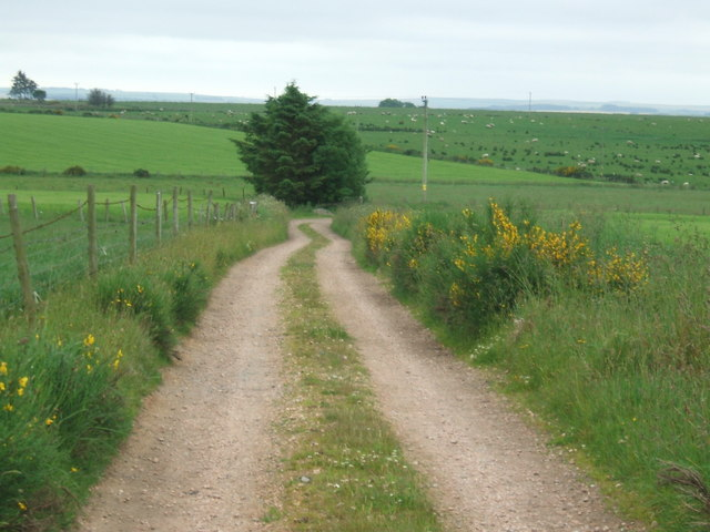 Farm road from Littlehill