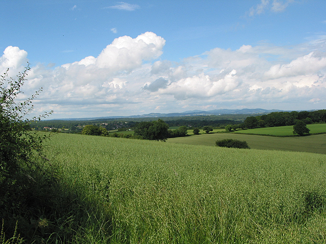 View from Linton Hill